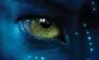 avatar-header-new